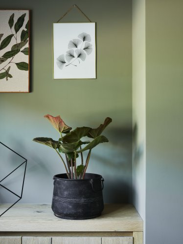 Rolgordijn kleurnr. 53044 - inspiratie